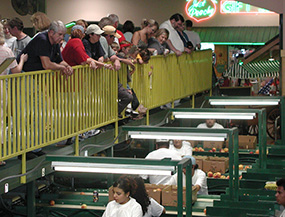 Lane Southern Orchards Packing Line